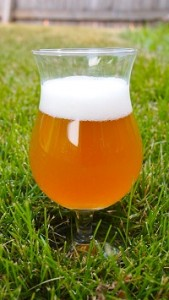 A Saison homebrewed beer