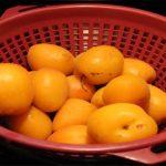 Ape-Rah-Hop: A Summer IPA Bursting with Fruit Flavor