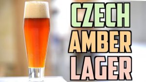 How To Czech Amber Lager Beer Homebrew Challenge