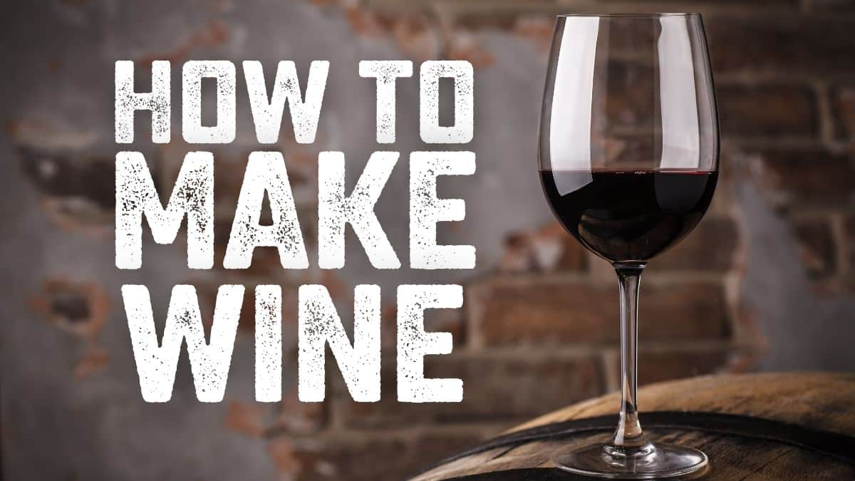 How to Make Homemade Wine: A Complete Guide to Fruit Wine and Red Wine Recipes