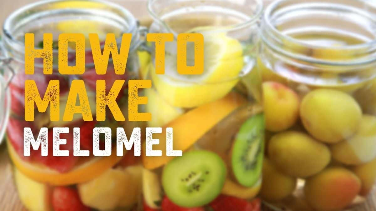 Melomel: What It Is & How To Make It [All the Essentials Listed Here]