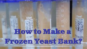 How to Make a Frozen Yeast Bank?