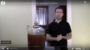 How to Wash Yeast for Homebrewing - Homebrew Academy