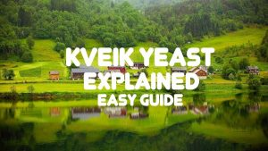 Kveik Yeast Explained Easy Guide for Beer Brewers