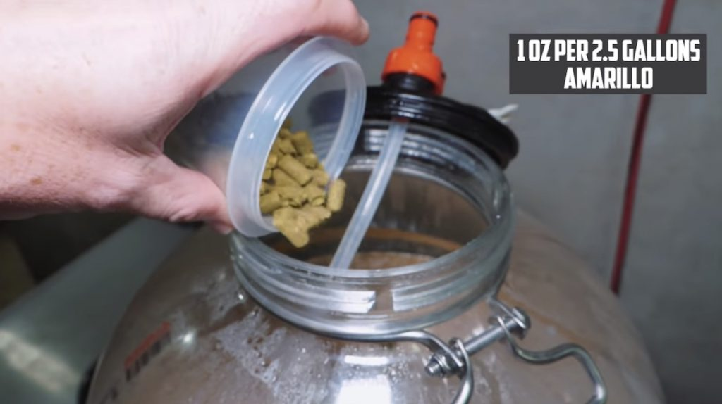Quarantine IPA | Quick and Easy Homebrewed Beer 12