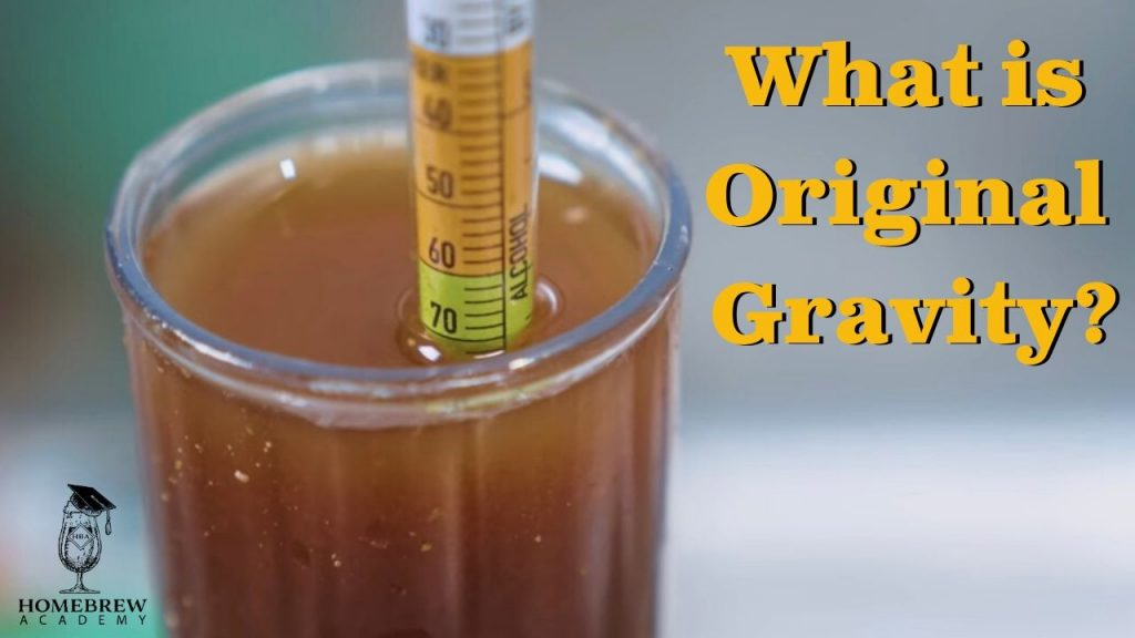 What is Original Gravity