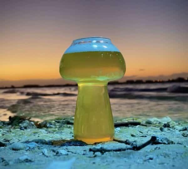 Mushroom Glass by Hazy.AF