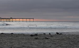 Picture of Ocean Beach San Diego