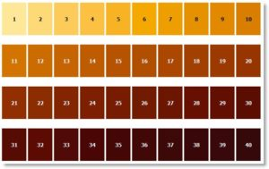 srm beer color chart